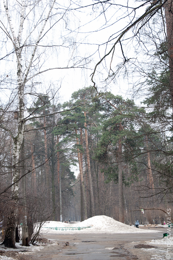 Прогулка по району Щукино.