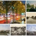 История озеленения Москвы